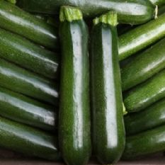 Courgette F1 Midnight - Container variety - 10 seeds